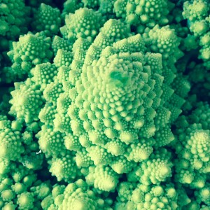 Romanesco broccoli looks like a work of art!